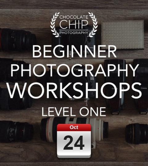 Beginner Photography Workshop – Level ONE – Sunday 24th October 2021