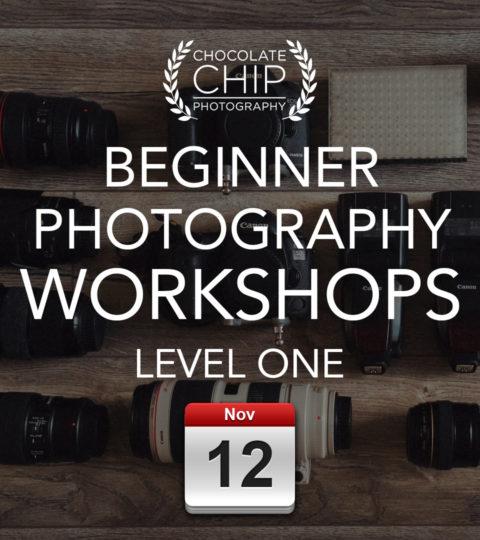 Beginner Photography Workshop – Level ONE – Friday 12th November 2021