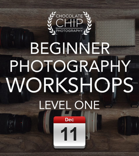 Beginner Photography Workshop – Level ONE – Saturday 11th December 2021