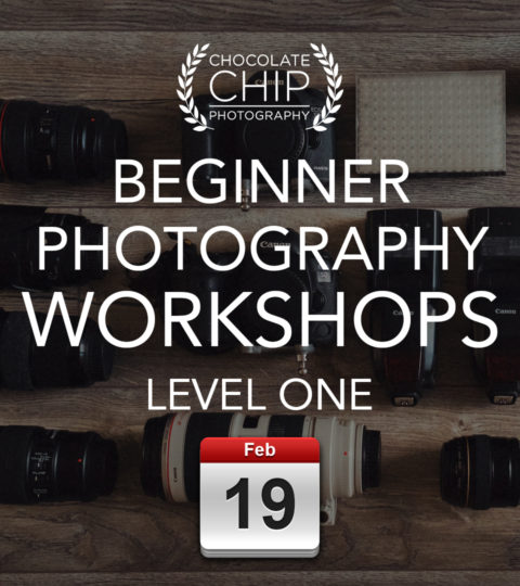 Beginner Photography Workshop – Level ONE – Saturday 19th February 2022